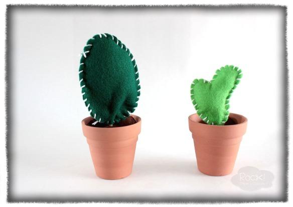 cactus-felt