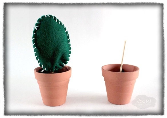 cactus-felt-steps