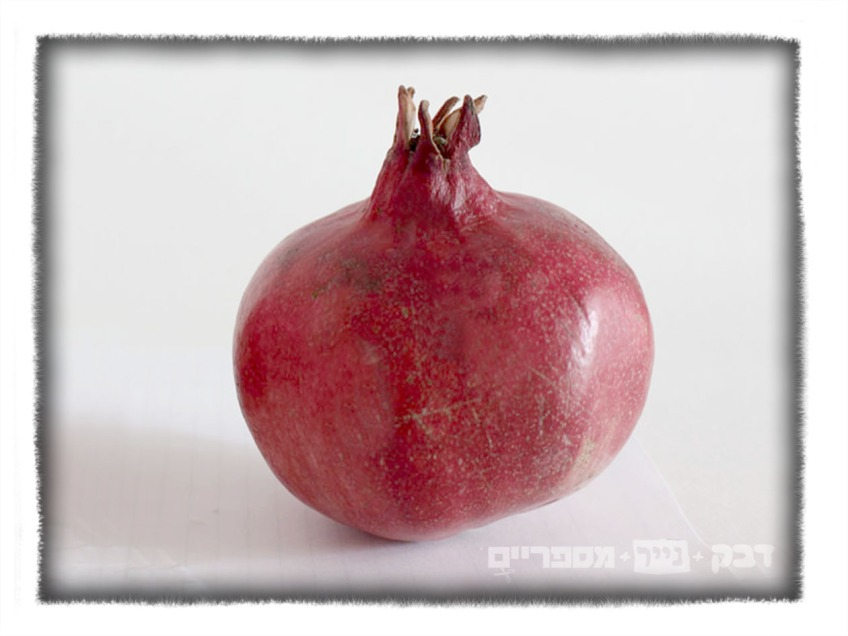https://www.etsy.com/listing/477344305/jewish-holiday-table-decor-pomegranate?ga_search_query=pomegranate&ref=shop_items_search_8