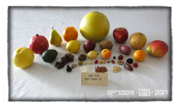 all fruits2