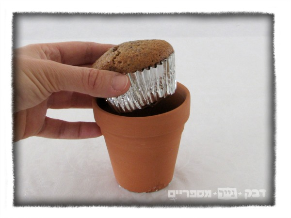 edible flower pot